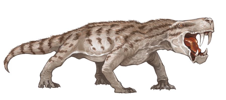 http://pearlsaurus.fc2web.com/elog/dino/inostrancevia_01.jpg